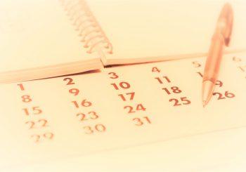 Sitzungen & Protokolle